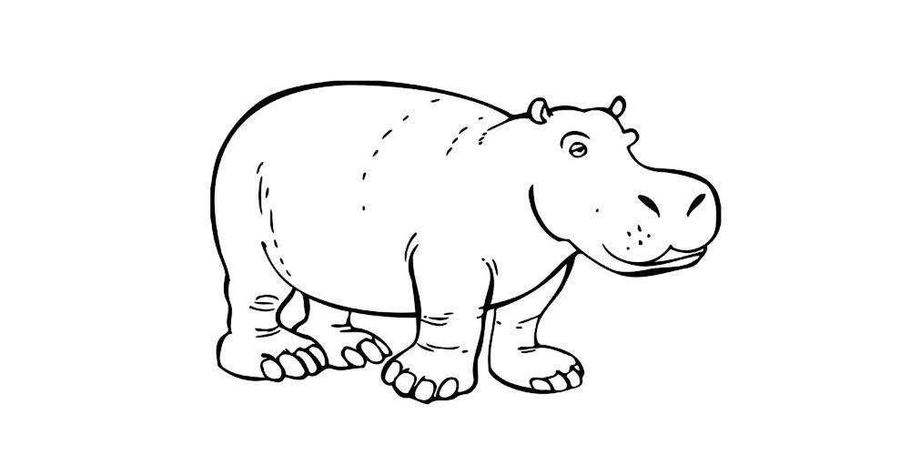 Dibujos de hipopótamos para colorear